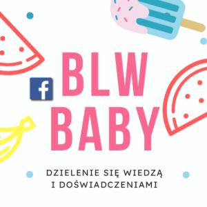 Grupa dla mam na FB BLW Baby